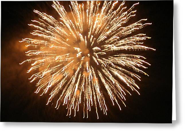 Fireworks In The Park 5 Greeting Card by Gary Baird