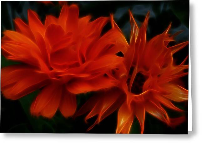 Firey Red Orange Flowers Abstract Greeting Card by Cindy Wright