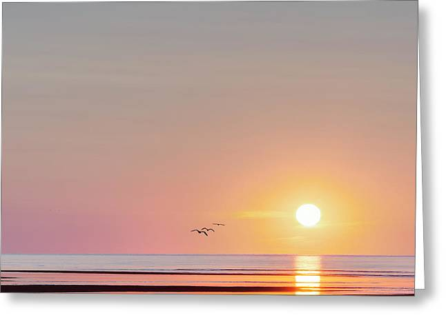 Square Format Greeting Cards - First Encounter Beach Cape Cod Square Greeting Card by Bill Wakeley