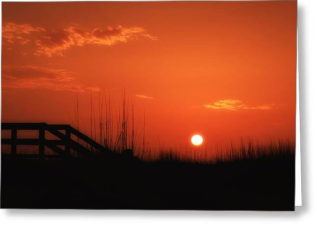 On The Beach Greeting Cards - First Light Greeting Card by Gary Oliver