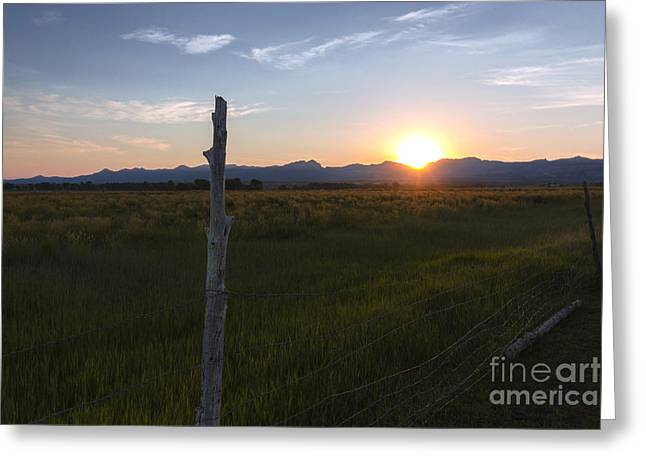 Garfield County Greeting Cards - First Light Greeting Card by Kristen Griffiths