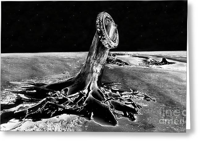 Sea Of Tranquility Greeting Cards - First Men On The Moon Greeting Card by David Lee Thompson