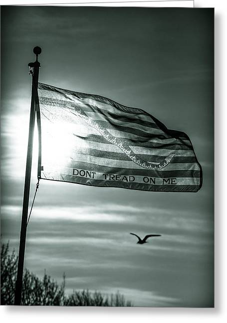 Snake Flag Greeting Cards - First Navy Jack Greeting Card by Chris Bordeleau
