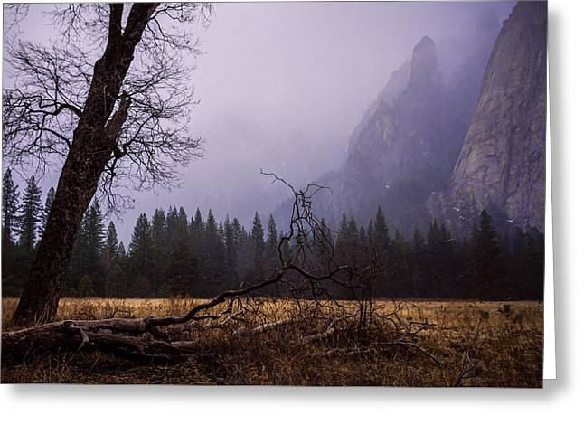 First Snow In Yosemite Valley Greeting Card by Priya Ghose