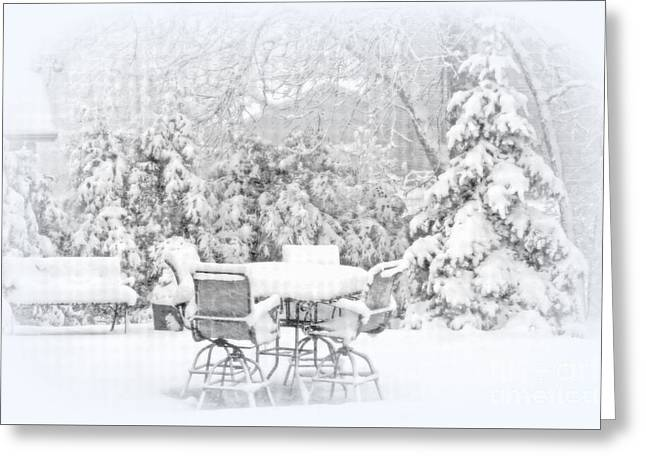 Greeting Cards - First Snow Greeting Card by Kay Novy