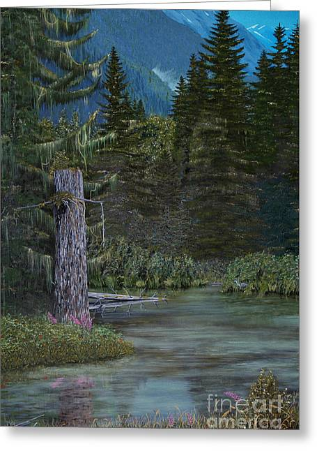 Print Greeting Cards - Fish Creek Lagoon Greeting Card by Stanza Widen