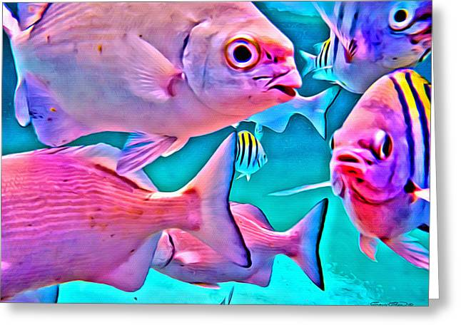 Mutton Snapper Greeting Cards - Fish Frenzy Greeting Card by Anthony C Chen