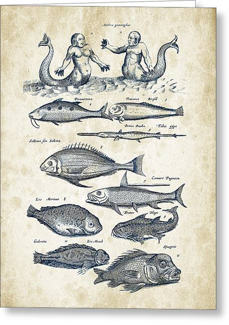 Fish Digital Greeting Cards - Fish Species and creatures Historiae Naturalis 08 - 1657 - 40 Greeting Card by Aged Pixel