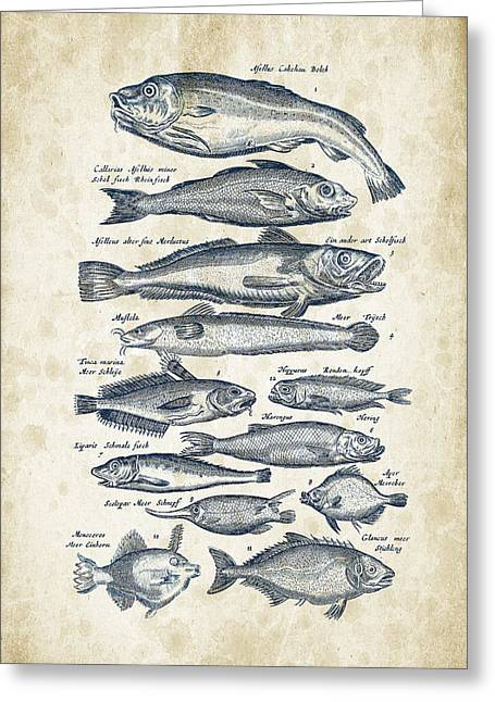 Trout Fishing Greeting Cards - Fish Species Historiae Naturalis 08 - 1657 - 01 Greeting Card by Aged Pixel