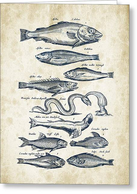 Trout Fishing Greeting Cards - Fish Species Historiae Naturalis 08 - 1657 - 02 Greeting Card by Aged Pixel