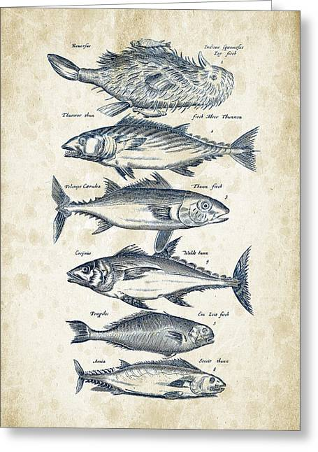 Trout Fishing Greeting Cards - Fish Species Historiae Naturalis 08 - 1657 - 03 Greeting Card by Aged Pixel