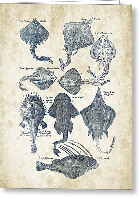 Fish Digital Greeting Cards - Fish Species Historiae Naturalis 08 - 1657 - 11 Greeting Card by Aged Pixel