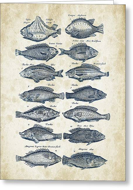 Vintage Books Greeting Cards - Fish Species Historiae Naturalis 08 - 1657 - 13 Greeting Card by Aged Pixel