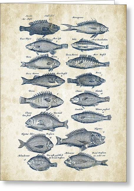 Fish Digital Art Greeting Cards - Fish Species Historiae Naturalis 08 - 1657 - 14 Greeting Card by Aged Pixel