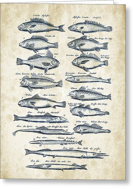 Fish Digital Greeting Cards - Fish Species Historiae Naturalis 08 - 1657 - 15 Greeting Card by Aged Pixel