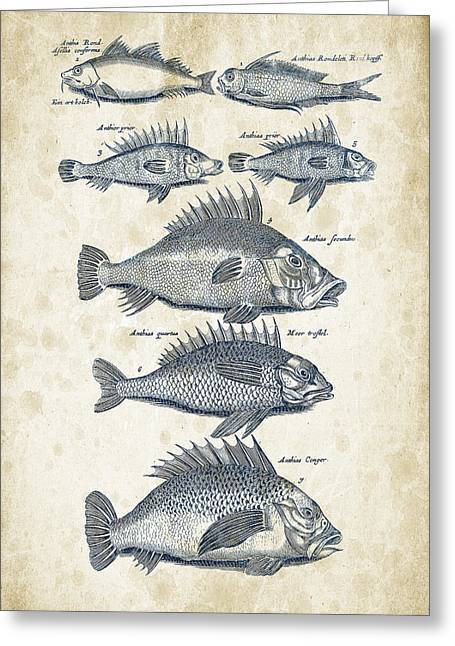 Vintage Books Greeting Cards - Fish Species Historiae Naturalis 08 - 1657 - 16 Greeting Card by Aged Pixel
