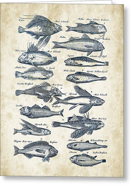 Fish Digital Art Greeting Cards - Fish Species Historiae Naturalis 08 - 1657 - 17 Greeting Card by Aged Pixel
