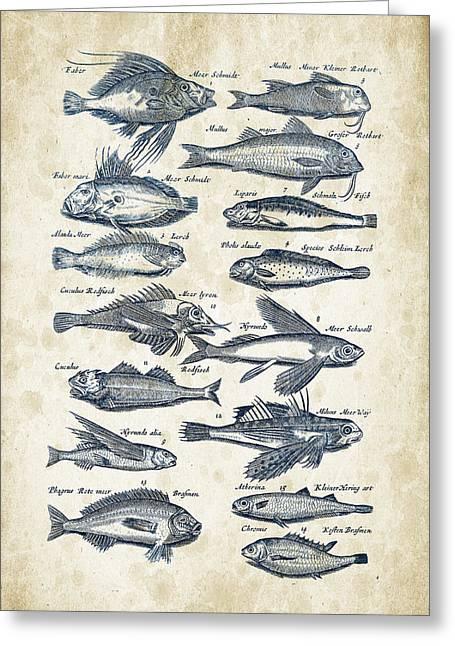 Fish Digital Greeting Cards - Fish Species Historiae Naturalis 08 - 1657 - 17 Greeting Card by Aged Pixel