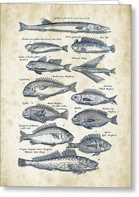 Fish Digital Art Greeting Cards - Fish Species Historiae Naturalis 08 - 1657 - 18 Greeting Card by Aged Pixel