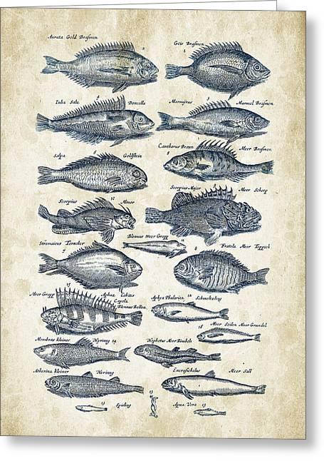 Fish Digital Art Greeting Cards - Fish Species Historiae Naturalis 08 - 1657 - 19 Greeting Card by Aged Pixel