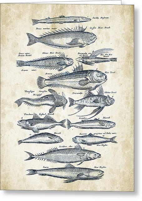 Fish Digital Art Greeting Cards - Fish Species Historiae Naturalis 08 - 1657 - 21 Greeting Card by Aged Pixel