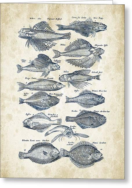 Fish Digital Art Greeting Cards - Fish Species Historiae Naturalis 08 - 1657 - 22 Greeting Card by Aged Pixel
