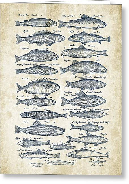 Vintage Books Greeting Cards - Fish Species Historiae Naturalis 08 - 1657 - 26 Greeting Card by Aged Pixel