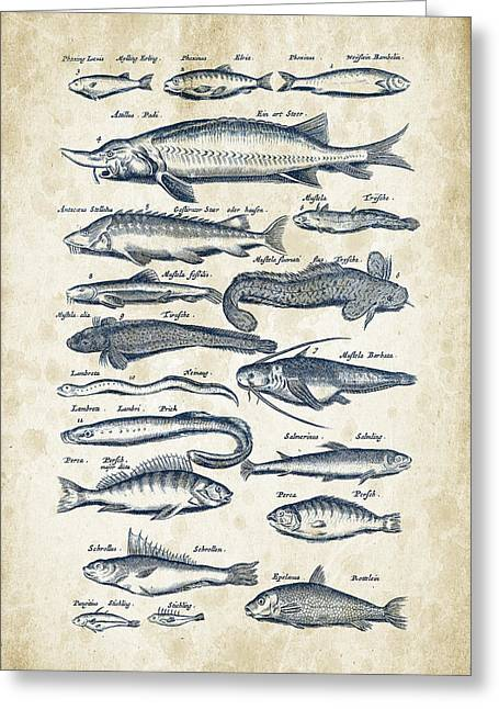 Fish Digital Greeting Cards - Fish Species Historiae Naturalis 08 - 1657 - 28 Greeting Card by Aged Pixel