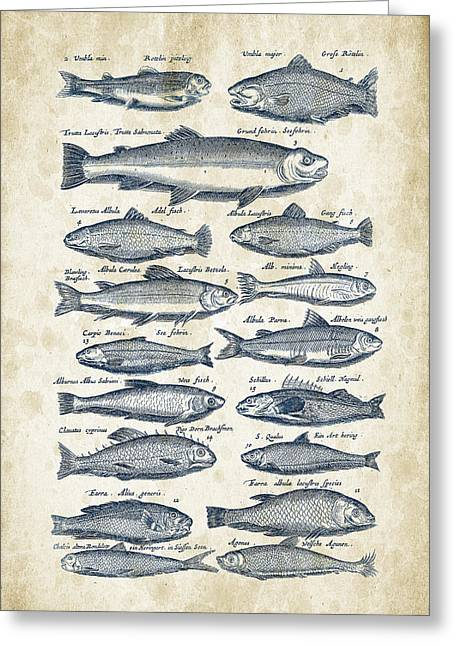 Fish Digital Greeting Cards - Fish Species Historiae Naturalis 08 - 1657 - 30 Greeting Card by Aged Pixel