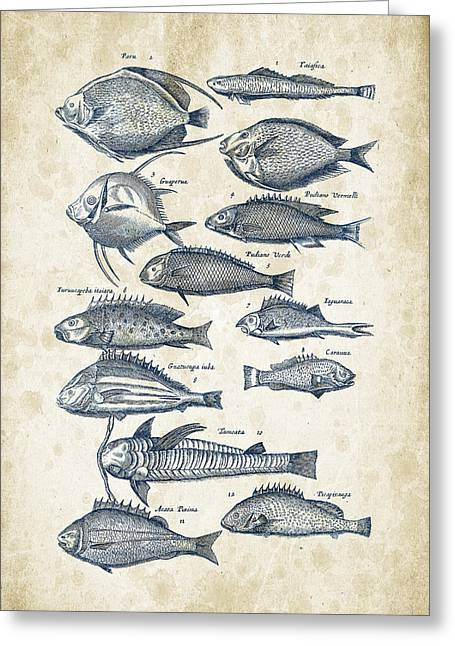 Fish Digital Greeting Cards - Fish Species Historiae Naturalis 08 - 1657 - 32 Greeting Card by Aged Pixel