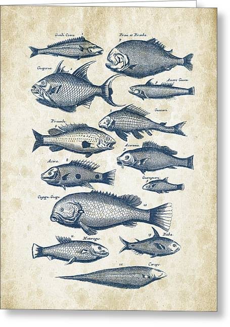 Fish Digital Greeting Cards - Fish Species Historiae Naturalis 08 - 1657 - 34 Greeting Card by Aged Pixel