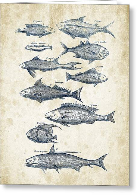 Fish Digital Greeting Cards - Fish Species Historiae Naturalis 08 - 1657 - 35 Greeting Card by Aged Pixel