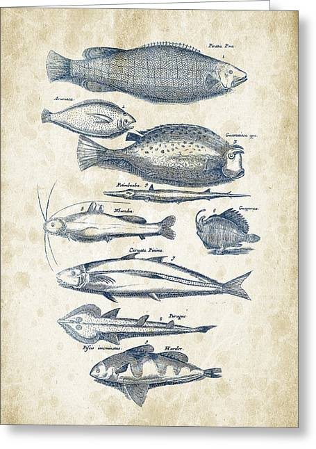 Fish Digital Greeting Cards - Fish Species Historiae Naturalis 08 - 1657 - 36 Greeting Card by Aged Pixel