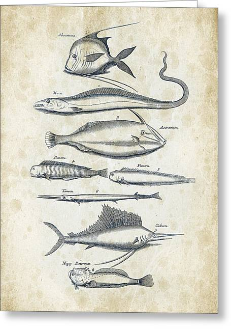 Fish Digital Art Greeting Cards - Fish Species Historiae Naturalis 08 - 1657 - 37 Greeting Card by Aged Pixel