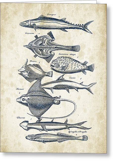 Fish Digital Greeting Cards - Fish Species Historiae Naturalis 08 - 1657 - 39 Greeting Card by Aged Pixel