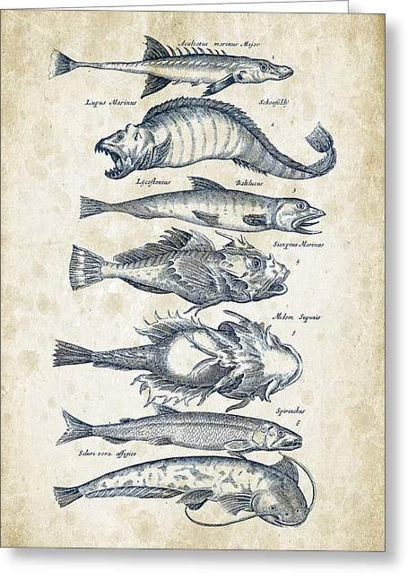 Fish Digital Greeting Cards - Fish Species Historiae Naturalis 08 - 1657 - 46 Greeting Card by Aged Pixel