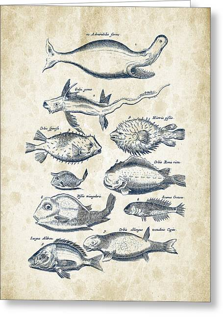 Vintage Books Greeting Cards - Fish Species Historiae Naturalis 08 - 1657 - 44 Greeting Card by Aged Pixel