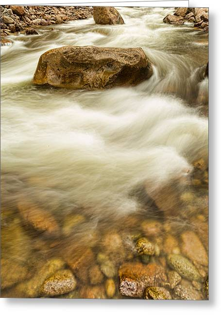 Fishing Creek Greeting Cards - Fishermans View Greeting Card by James BO  Insogna