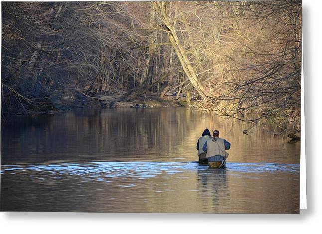 Fishing Creek Greeting Cards - Fishing in Chester Creek Greeting Card by Bill Cannon