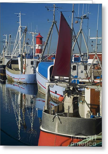 Habor Greeting Cards - Fishing Port Greeting Card by Wedigo Ferchland
