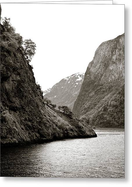 Fjord Beauty Greeting Card by Dave Bowman
