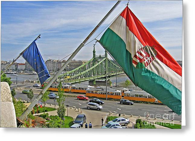 Greeting Cards - Flags Over Budapest Greeting Card by Ann Horn