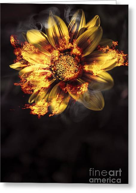 Engulfing Greeting Cards - Flames of passion and intimacy Greeting Card by Ryan Jorgensen