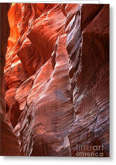 Utah Slot Canyon Greeting Cards - Flaming Walls Of Sandstone Greeting Card by Adam Jewell