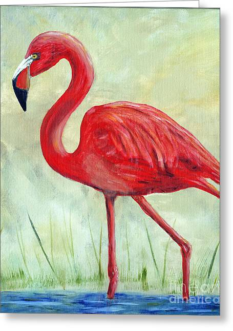 Flamingo Greeting Card by Timothy Hacker