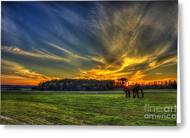 Flash The Iron Horse Sunset Greeting Card by Reid Callaway