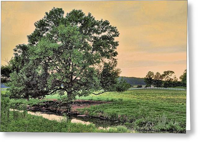 Apricot Greeting Cards - Flat Creek In The Evening Greeting Card by Jan Amiss Photography