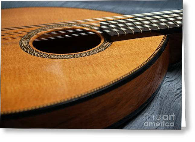 Mandolin Greeting Cards - Flatiron Mandolin on Blue Greeting Card by Anna Lisa Yoder