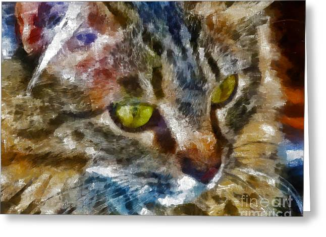 Marilyn Sholin Greeting Cards - Fletcher Kitty Greeting Card by Marilyn Sholin