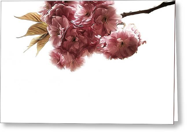 Prospects Greeting Cards - Fleur De Printemps Greeting Card by Natasha Marco